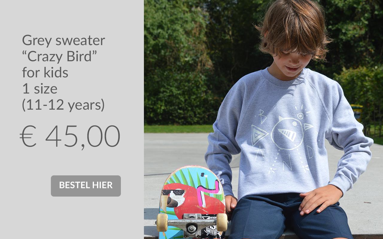 Bandz sweater Crazy Birds for kids